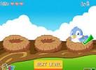 Game Tìm Chim