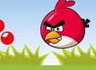 Game Angry Bird Nhặt Bóng