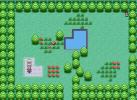 Game Truy tìm pokemon trong vườn sóc nhí